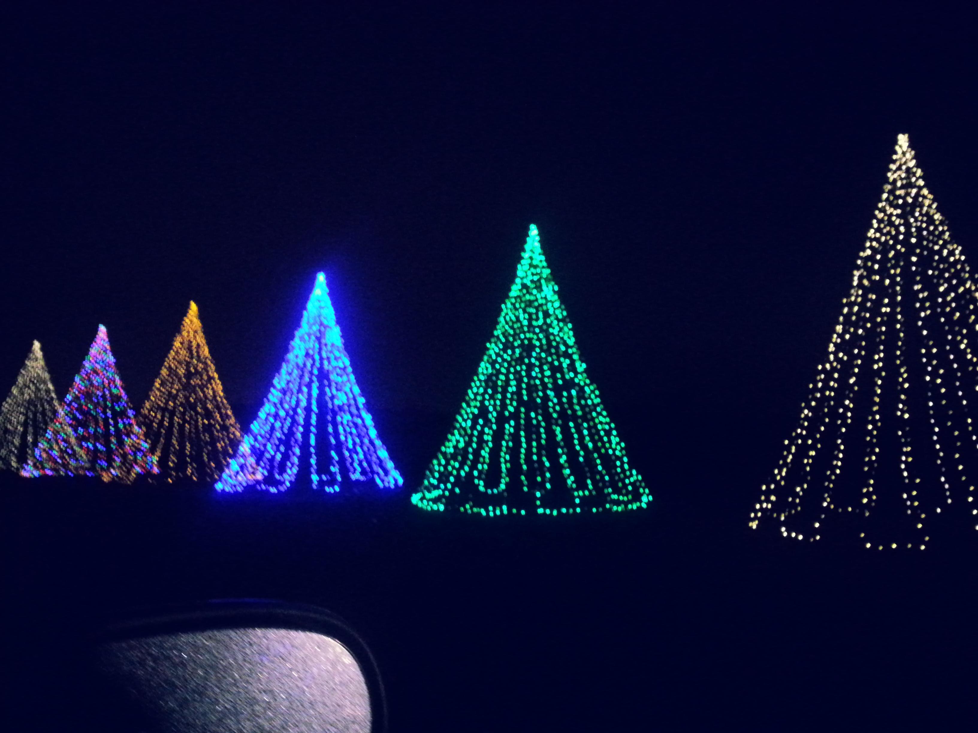 Shadybrook farms holiday lights hip n 39 creative for Shady brook farms