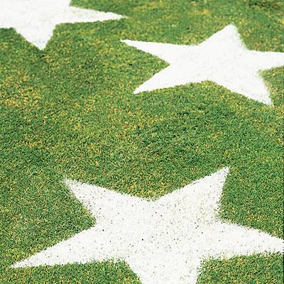 stars-on-lawn-l